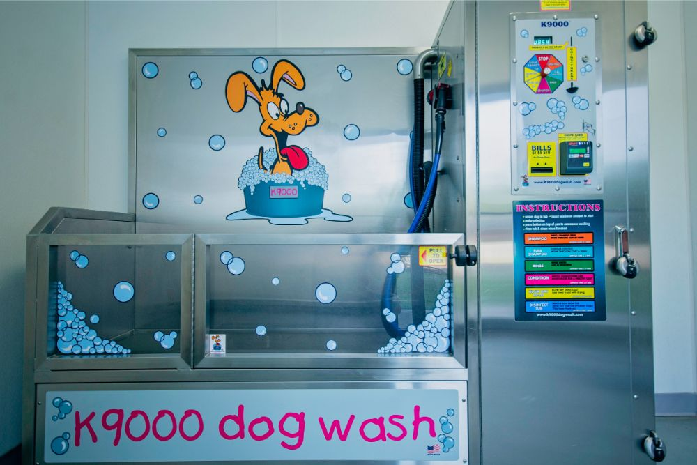 Newcastle dog wash 3